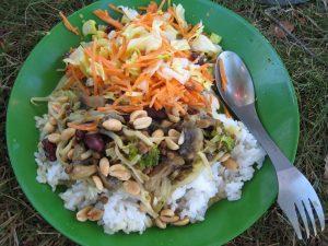 camping eten, groen bord met glutenvrije vegan curry met pinda en wortelgras